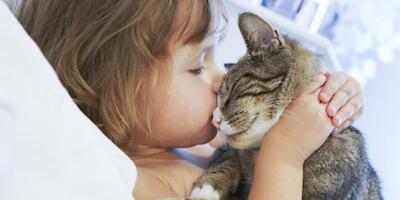 23bac0daca3e Πολλοί άνθρωποι θεωρούν ότι οι γάτες δεν είναι ζώα που δένονται με τον  άνθρωπο